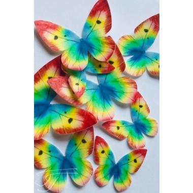 Kirju liblikas - vahvlist kaunistus, 20tk