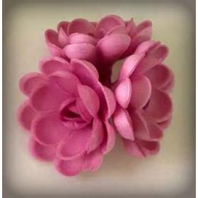 Keskmine lilla vahvliroos, 5tk