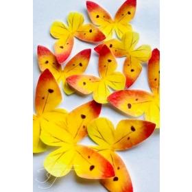 Kollane liblikas - vahvlikaunistus, 20tk