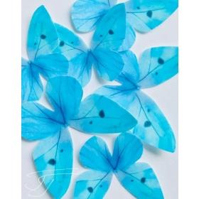 Helesinine liblikas, vahvlikaunistus, 20tk