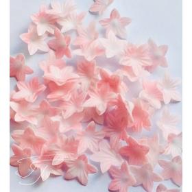 Mini vahvlilill - roosa, 50tk