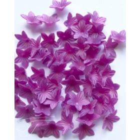 Mini vahvlilill - lilla, 50tk