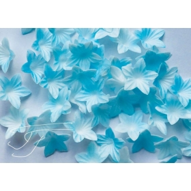 Mini vahvlilill - sinine, 50tk