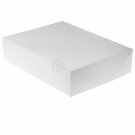 Koogikarp, 19,5x26x6cm