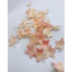 Mini vahvlilill - beež/roosa-ombre, 50tk